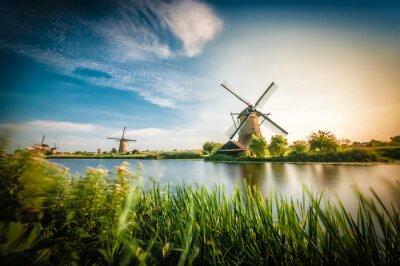 Cuadro Historiadores molinos de viento holandeses acercan a Rotterdam