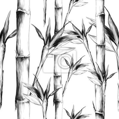 Cuadro hojas ramas tallo bambú patrón flores textura marco sin costura dibujo vectorial gráficos monocromo dibujo en blanco y negro