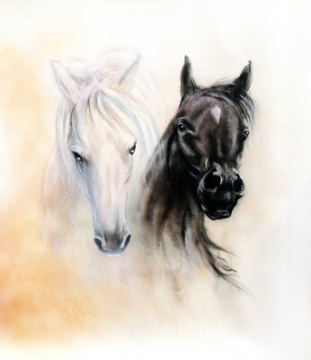 Cuadro Horse heads, two black and white horse spirits, beautiful detail