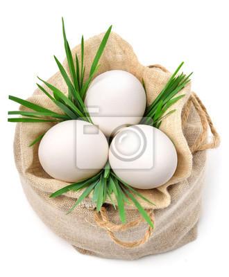 Cuadro huevos en el saco con la hierba verde