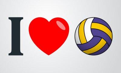Cuadro Icono plano amo el voleibol de color de fondo degradado