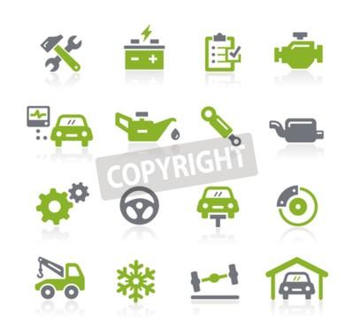 Cuadro Iconos de servicio de automóvil - Serie Natura