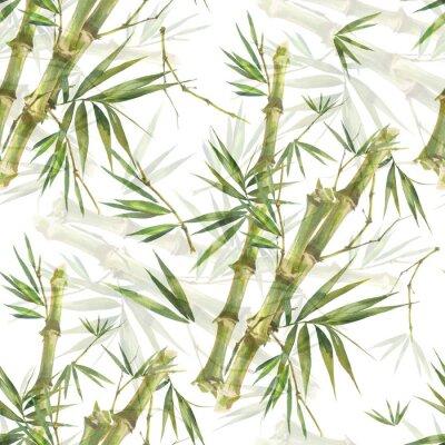 Cuadro Ilustración acuarela de hojas de bambú, patrones sin fisuras sobre fondo blanco.