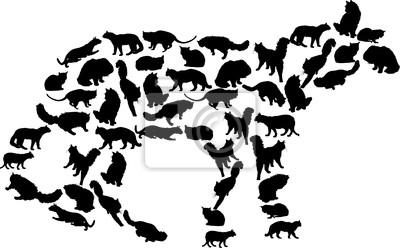 ilustración con complejo de gato negro
