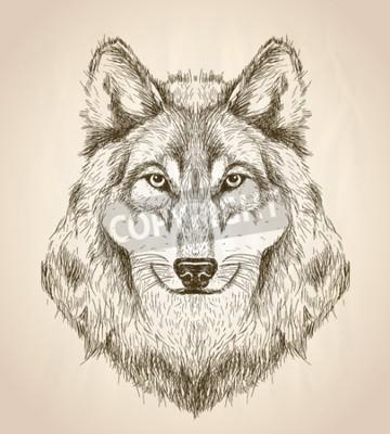 Cuadro Ilustración de boceto de vector de una cabeza de lobo vista frontal, blanco y negro vector de diseño de vida silvestre.