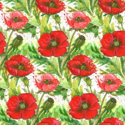 Cuadro Ilustración de la acuarela de las amapolas rojas