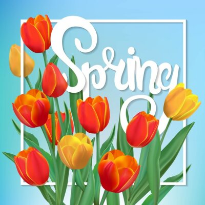 Cuadro Ilustración de la primavera con tulipanes y marco.