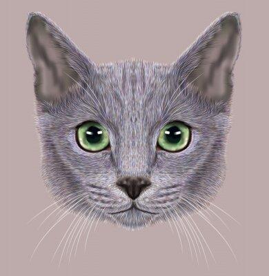 Cuadro Ilustración de retrato de gato azul ruso. Gato doméstico lindo con los ojos verdes.