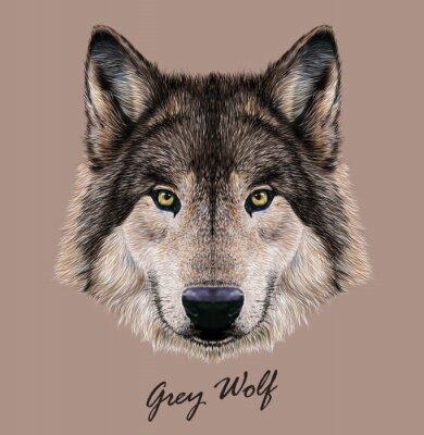 Cuadro Ilustración vectorial digital Retrato de un lobo.