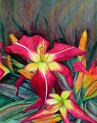 Cuadro Ilustraciones de acrílico de flores brillantes. Flores lirios de día.