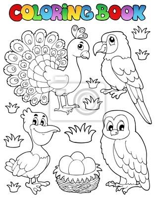 Imagen libro para colorear pájaro 4 pinturas para la pared • cuadros ...