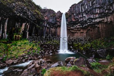 Cuadro Increible vista de la cascada de Svartifoss. Imagen escénica del paisaje hermoso de la naturaleza. Atracción turística popular. Parque nacional de Skaftafell de la ubicación, glaciar de Vatnajokull, I
