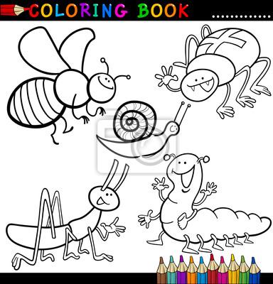 Insectos y bichos para coloring book o página pinturas para la pared ...