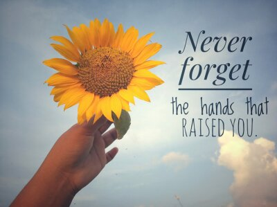 Cuadro Inspirational motivational quote - Never forget the hands that raised you. With background of blue sky and beautiful sunflower blossom in hand. Photo concept with nature.