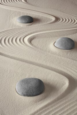 Cuadro Jardín Zen