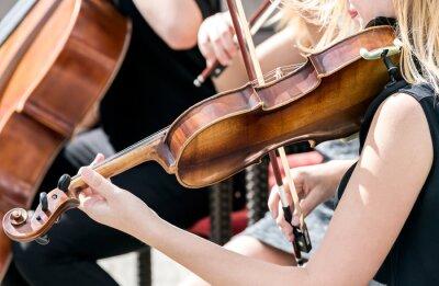Cuadro Joven, mujer, juego, violín