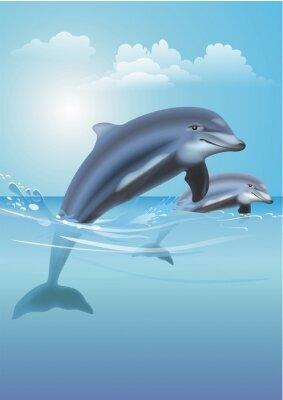 Cuadro Jumping Dolphins Ilustración