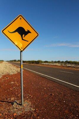 Cuadro Kangaroo Sign en el sur de Australia