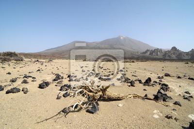 La arena y las rocas del desierto