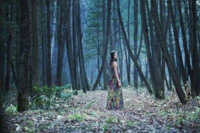 Cuadro La chica en un bosque oscuro