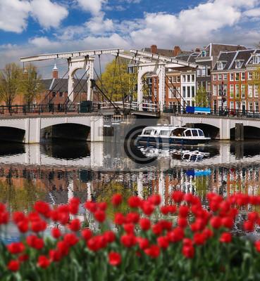 Cuadro La ciudad de Amsterdam con los barcos en el canal en contra de tulipanes rojos en Holanda