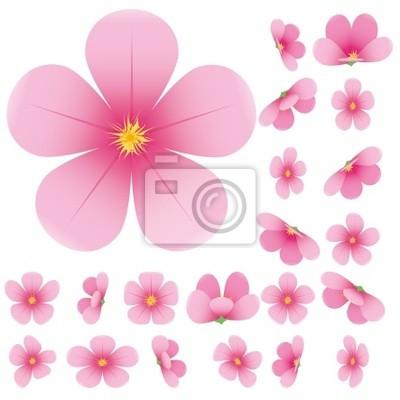 La Flor De Cerezo Flores De Sakura Ilustración Vectorial Pinturas