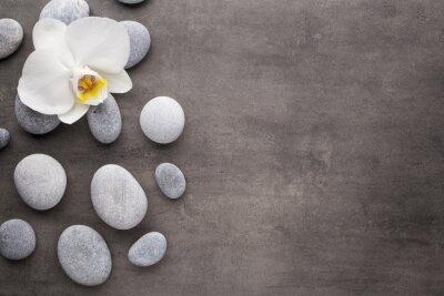 Cuadro La orquídea blanca y del balneario en el fondo gris.
