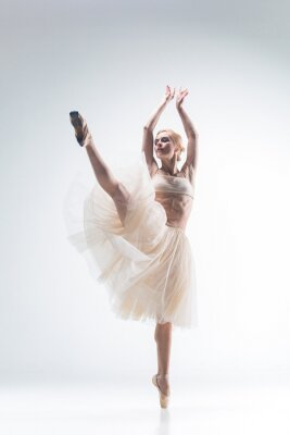 Cuadro La silueta de la bailarina en el fondo blanco