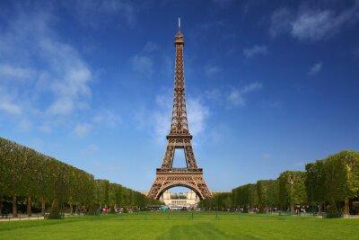 Cuadro La Torre Eiffel en París