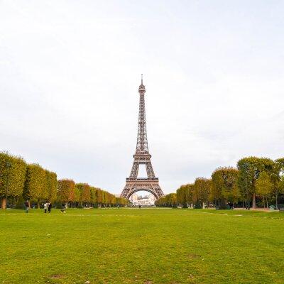 Cuadro La Torre Eiffel en París, Francia