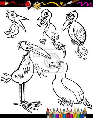 Las aves de dibujos animados para colorear libro pinturas para la ...