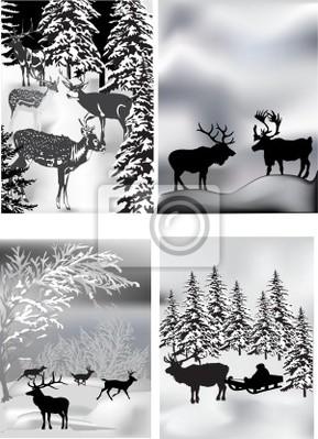 Las composiciones con cuatro ciervos invierno