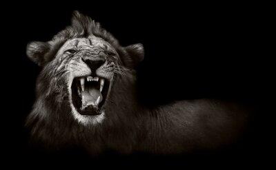 Cuadro León que visualiza los dientes peligrosos