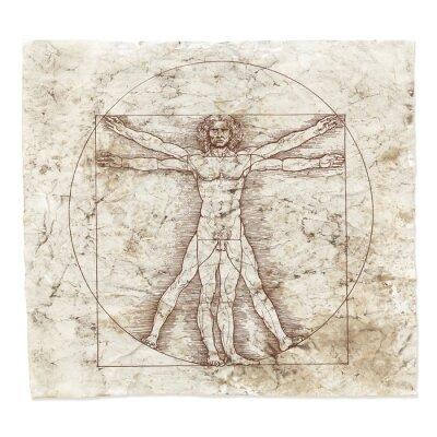 Cuadro Leonardo da Vinci