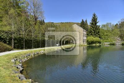 Les Berges de l'Etang du Moulin près de l'ancien moulin à eau aux Jardins d'Eau d'Annevoie
