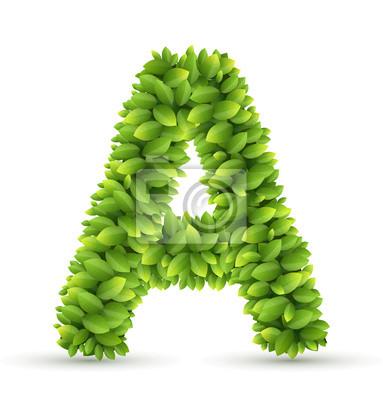 Letra a, alfabeto vector de hojas verdes pinturas para la pared ...