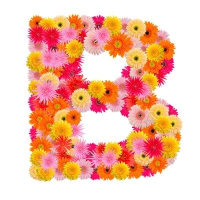 Cuadro Letra B alfabeto con gerbera aislado sobre fondo blanco