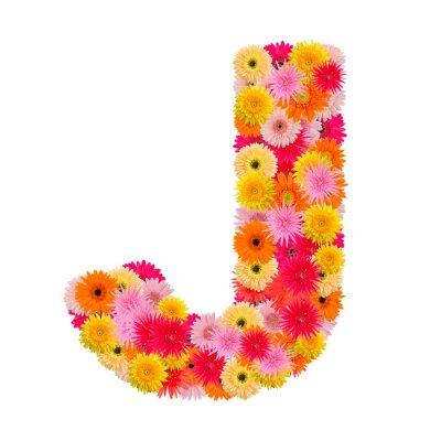 Cuadro Letra J alfabeto con gerbera aislado sobre fondo blanco