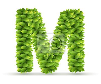 Letra m, alfabeto vector de hojas verdes pinturas para la pared ...