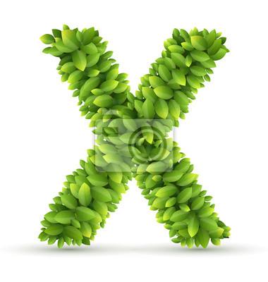 Letra x, vector alfabeto de hojas verdes pinturas para la pared ...
