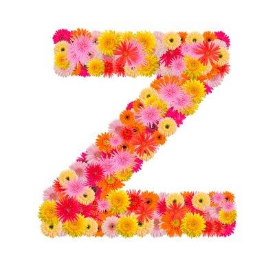 Cuadro Letra Z alfabeto con gerbera aislado sobre fondo blanco