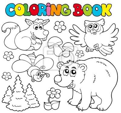 Libro De Colorante Con Los Animales Del Bosque 1 Pinturas Para La