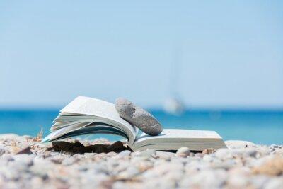 Cuadro Libro en la playa