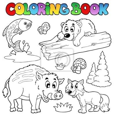 Libro Para Colorear Con Animales Del Bosque Pinturas Para La Pared