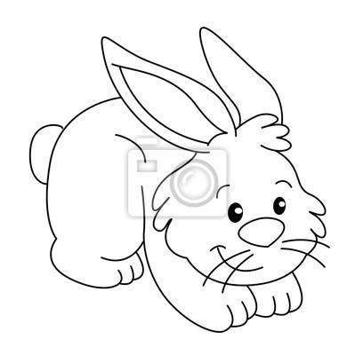 Libro para colorear con granja de animales, vector de conejo ...