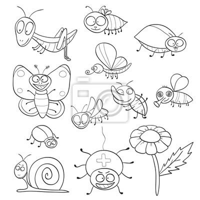 Libro para colorear con los insectos pinturas para la pared ...