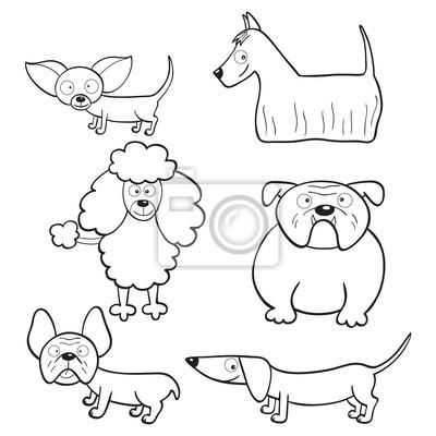 Libro Para Colorear Con Perros De Dibujos Animados Pinturas Para La