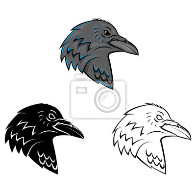 Libro Para Colorear Dibujos Animados Cuervo Cabeza Pinturas