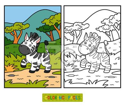 Cuadro Libro Para Colorear Para Niños Cebra Y Fondo