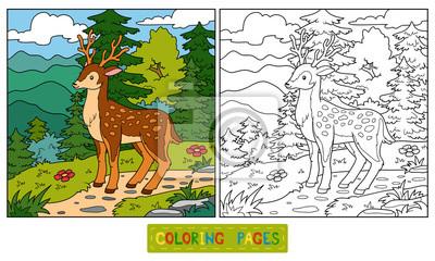 Cuadro Libro Para Colorear Para Niños Venado Y Fondo